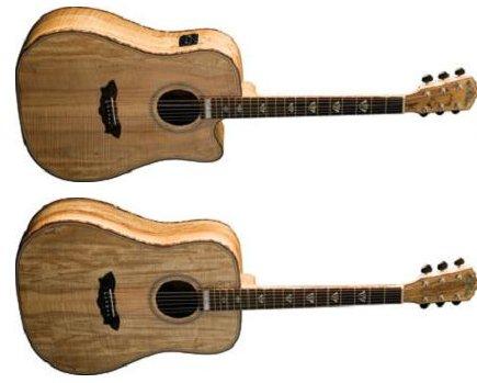 Washburn Limited Edition Rare Wood Acoustic Guitars