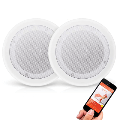 2-Way Universal Home Speaker System